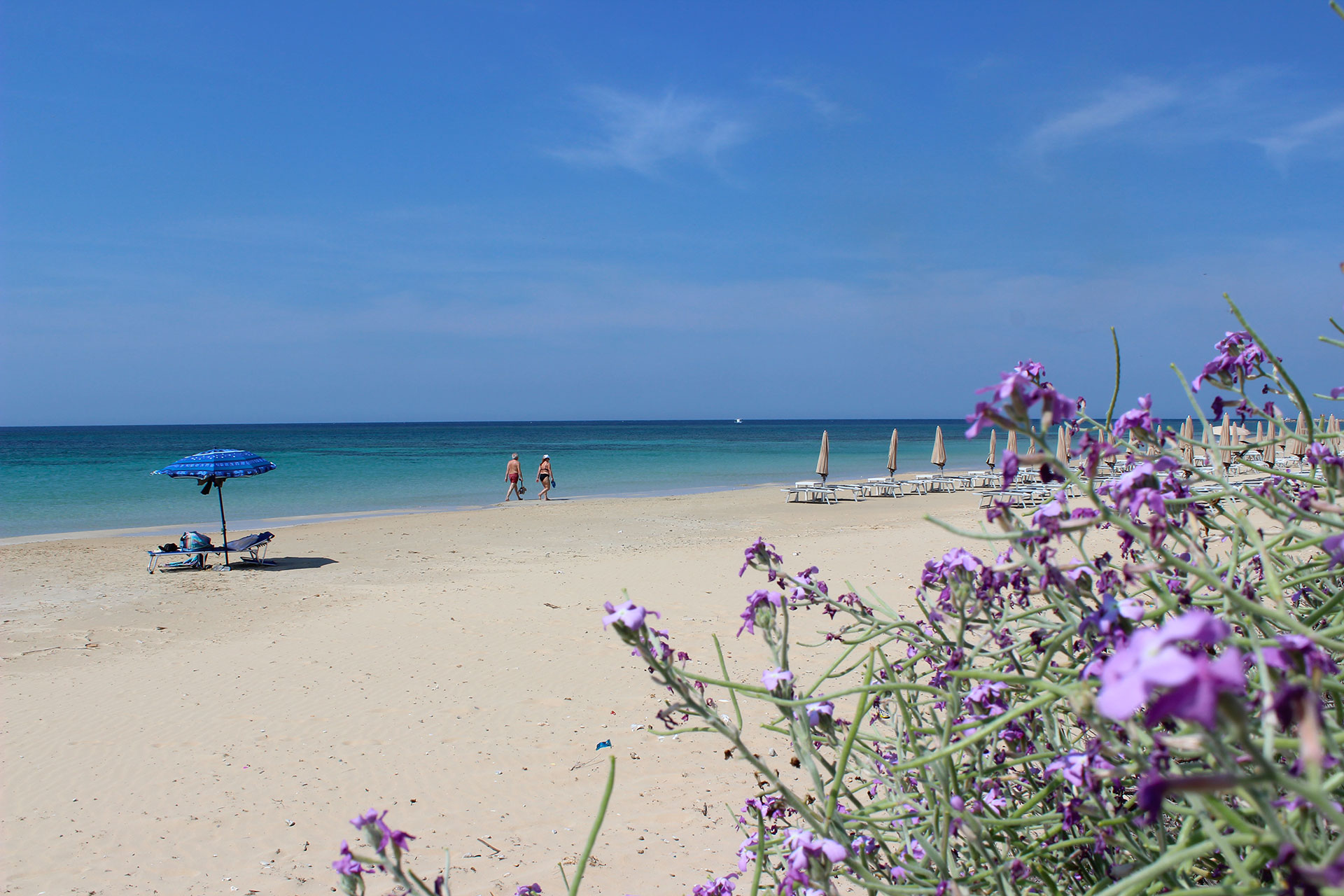 spiaggia la scisa casa vacanze e affitto appartamenti Salento
